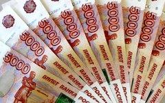Полиция задержала москвича на Камчатке с 8 миллионами фальшивых рублей